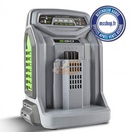 CHARGEUR EGO POWER CH5500E - MSSHOP