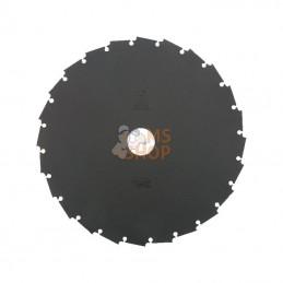 6695793; HIKOKI; Lame scie 24T-200-25,4-1,6mm; pièce detachée