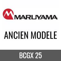 BCGX 25