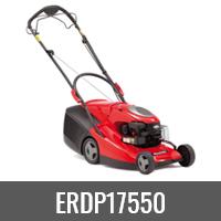 ERDP17550
