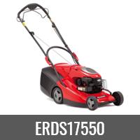 ERDS17550