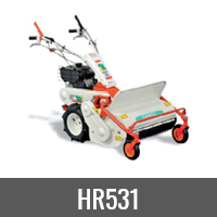 HR531