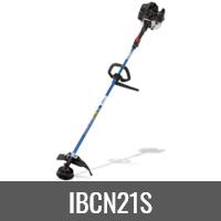 IBCN21S