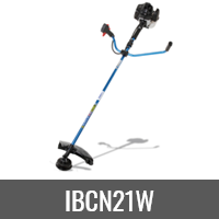 IBCN21W