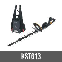 KST613