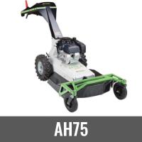 AH75.png