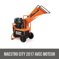 MAESTRO CITY 2017 AVEC MOTEUR