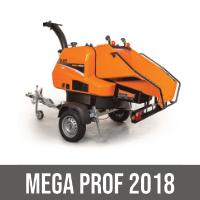 MEGA PROF 2018
