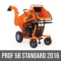 PROF 5B STANDARD 2016