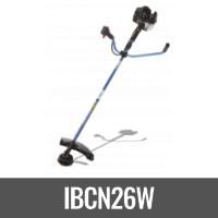 IBCN26W