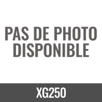 XG250