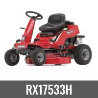 RX17533H