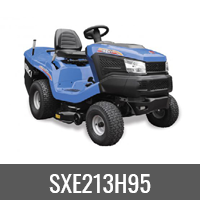 SXE213H95