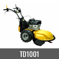 TD1001