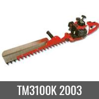 TM3100K 2003