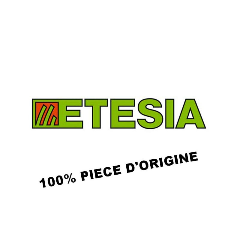 ACCES.SANGLE PORTAG | Etesia
