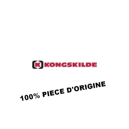 KONGSKILDE