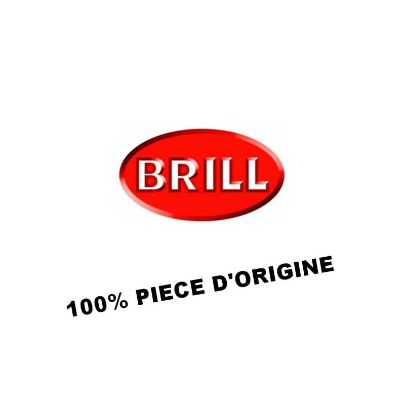 1/2 COQUILLE INF | BRILL