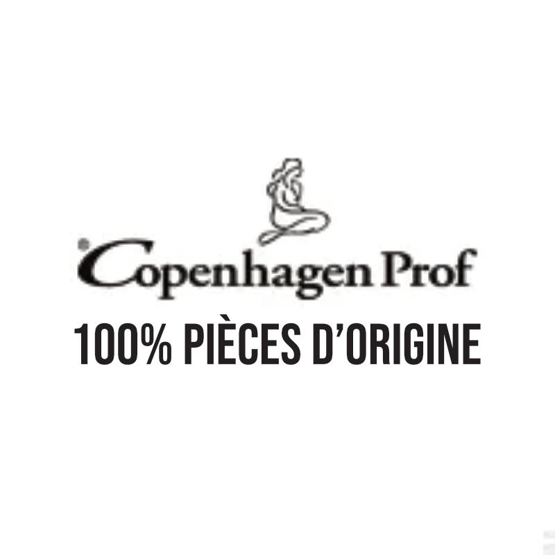 COPENHAGEN PROF